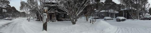 panorama in snow